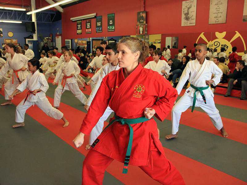 A1, John Leroux's World KarateFIT Centre in Ottawa, Ontario